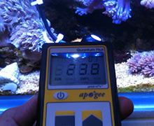 Measuring PAR underwater with the Apogee Instruments MQ-200 PAR meter